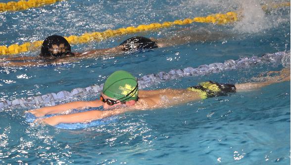 水泳メインイメージ