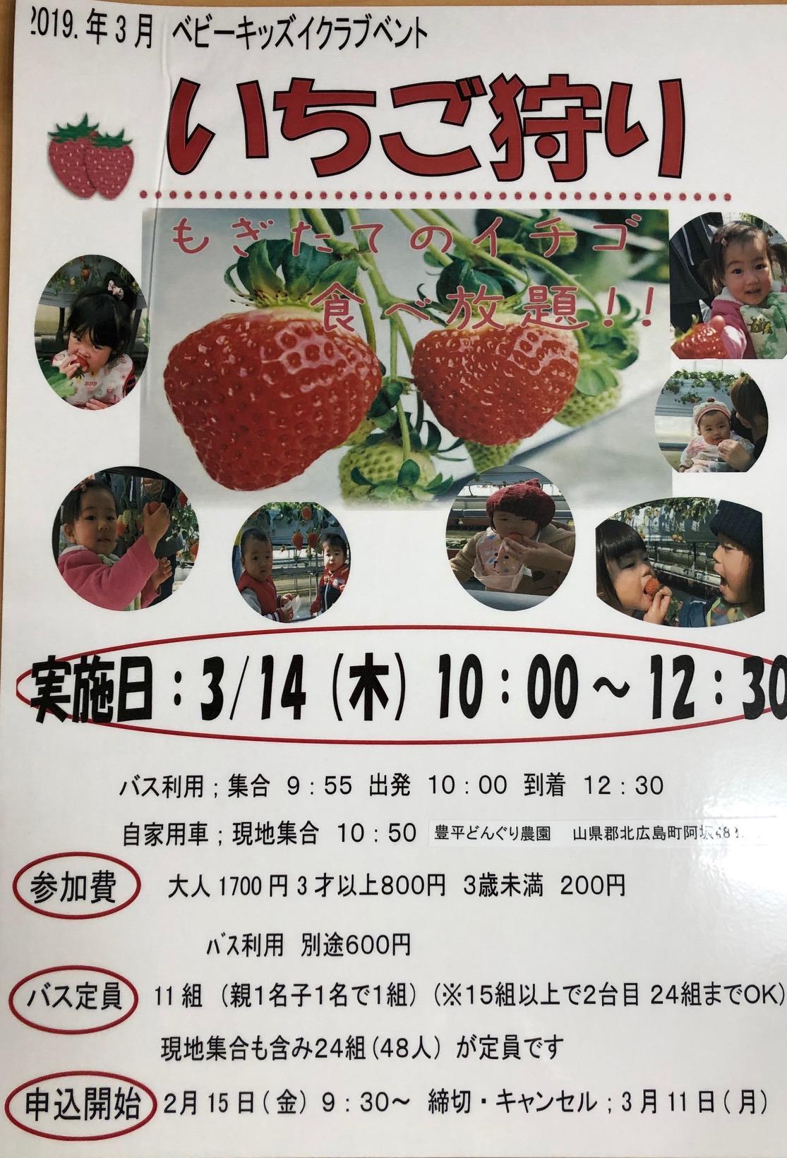 広島 いちご 狩り 「いちご」狩りが一番人気!